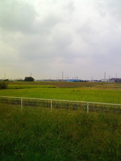 春日部006