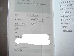 DSC05473.jpg