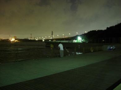 西公園夜2