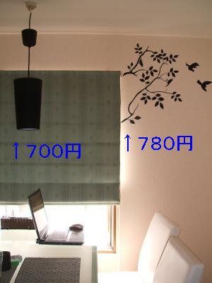 DSCF2164_convert_20090516122446.jpg