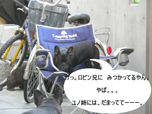 P1030125.jpg