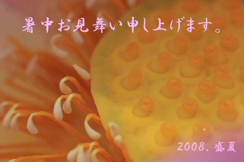 c-1_20080717151623.jpg