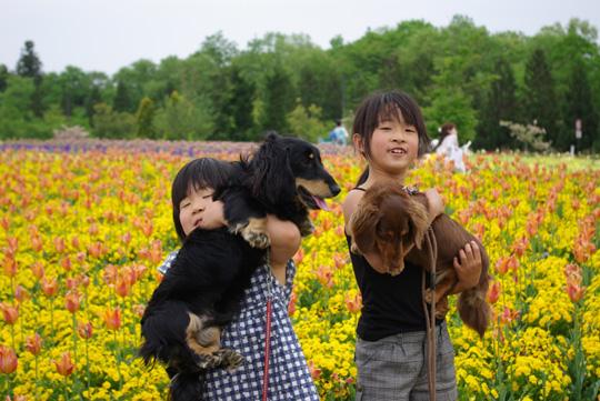 2008.5.4備北丘陵公園6