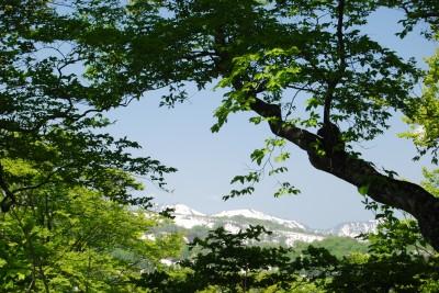 s-08・05・21~22 浅草岳 024