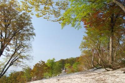 s-08・05・21~22 浅草岳 097