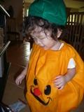 今年もかぼちゃ