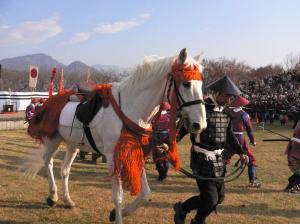 川中島 馬