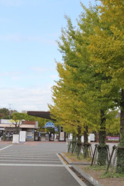 昭和記念公園に来たじょ