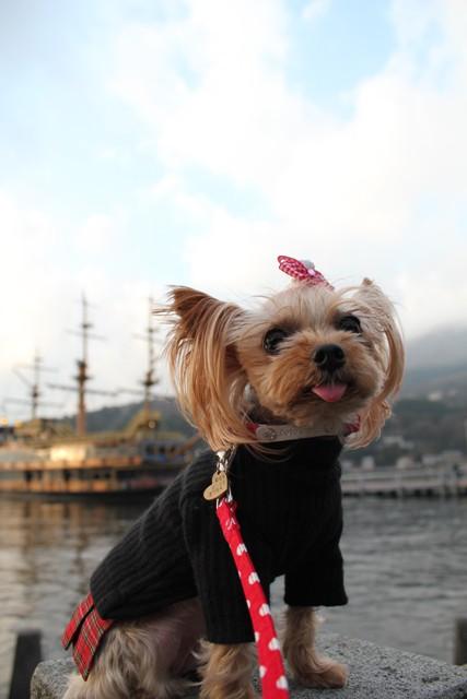 海賊船とノン