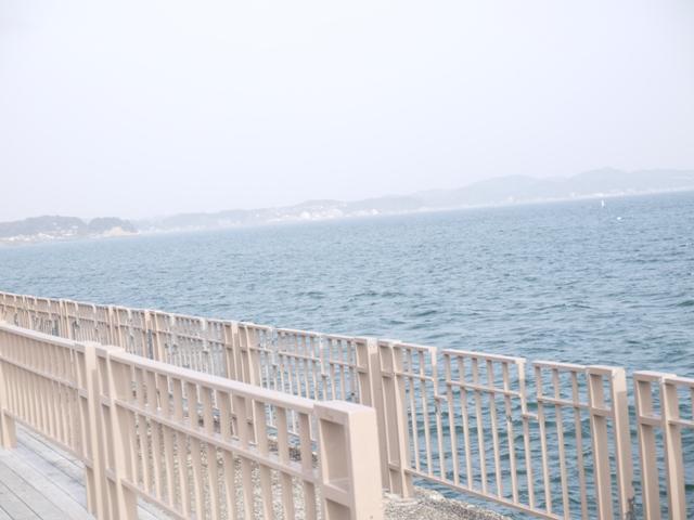 海に着たよ
