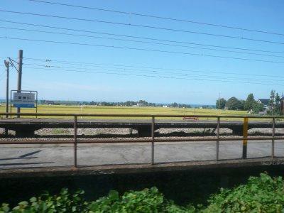 富山湾を望む