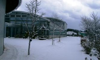 雪のある日