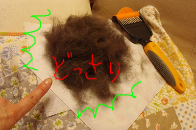 s-センリの抜け毛のコピー