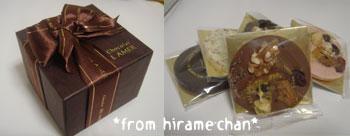 20081006hiramechan.jpg