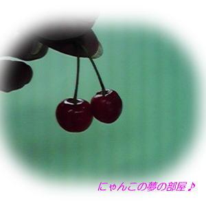 527sakura.jpg