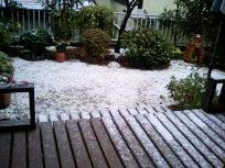 雪降った~!