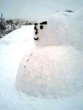 雪だるま君