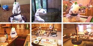 さようなら田沢湖温泉・プラトーホテル