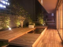 庭のホテル3