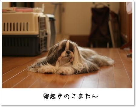 2008_0908_063153AA.jpg