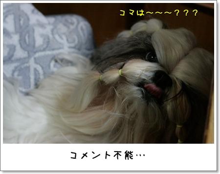 2008_0910_182212AA.jpg