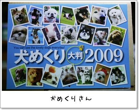 2008_0910_182718AA.jpg
