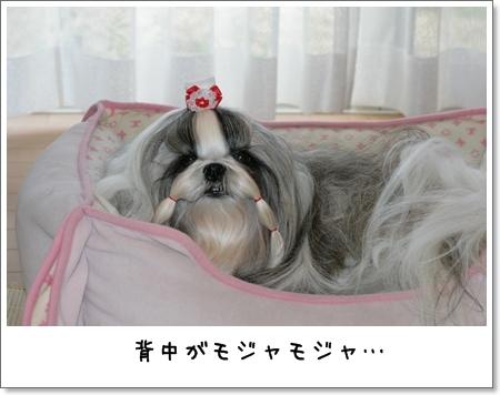 2008_0919_073442AA.jpg