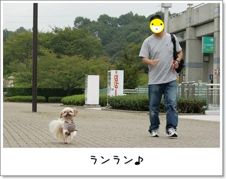 2008_0920_125207AB.jpg