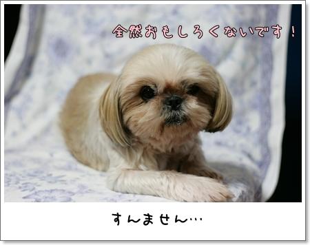 2008_0922_183441AA.jpg