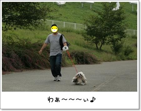 2008_0923_152212AA.jpg