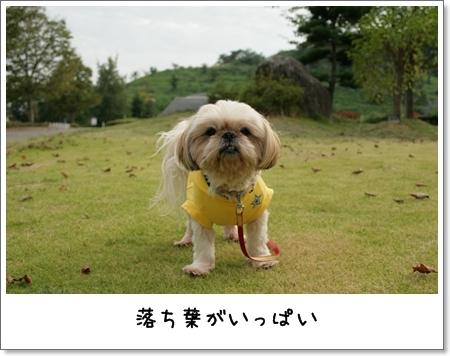 2008_0923_154732AA.jpg
