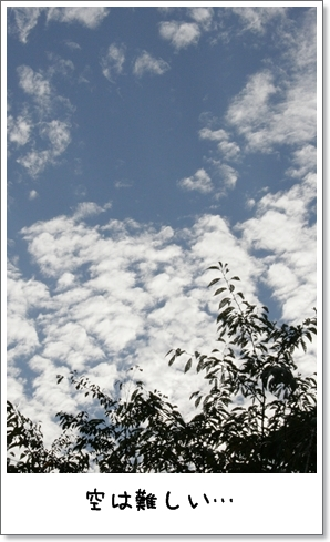 2008_0923_155213AA.jpg