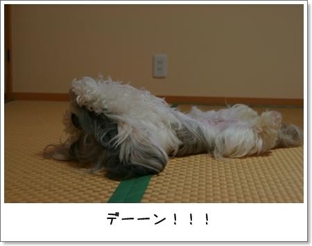 2008_0928_171404AA.jpg