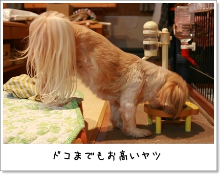 2008_0928_171443AA.jpg
