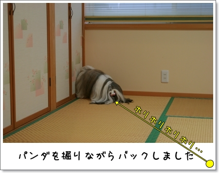 2008_0928_171551AA.jpg