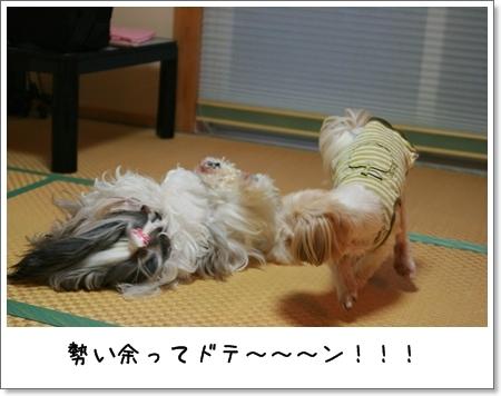 2008_0928_172743AA.jpg