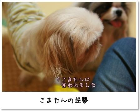 2008_0928_172842AA.jpg