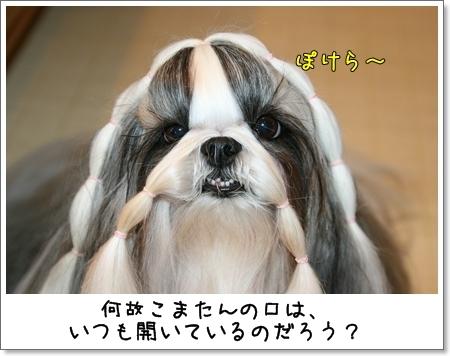 2008_1007_073432AA.jpg