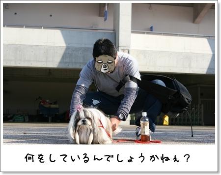 2008_1013_145441AA.jpg