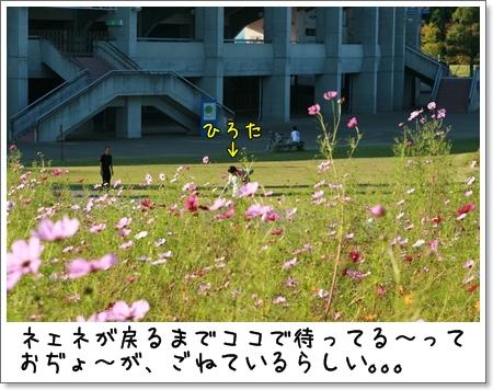 2008_1013_150000.jpg