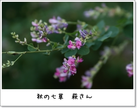 2008_1013_150634AA.jpg