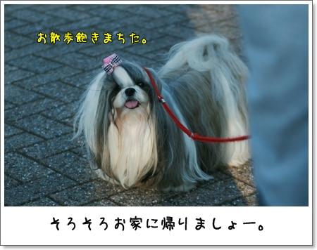 2008_1013_152800AA.jpg
