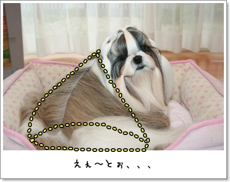 2008_1015_073458AA.jpg