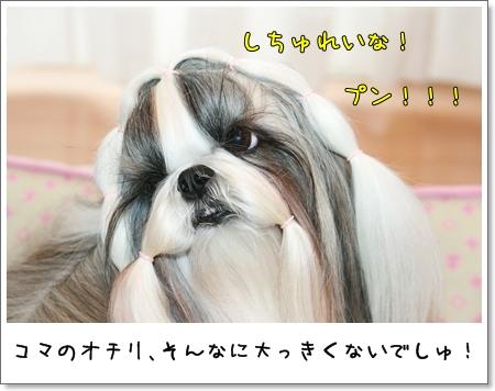 2008_1015_073542AA.jpg