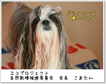2008_1018_132652AA.jpg