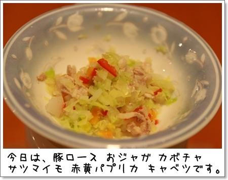 2008_1019_195021AA.jpg