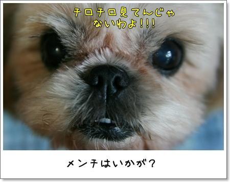 2008_1021_191952AB.jpg