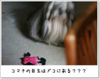 2008_1023_190430AA.jpg