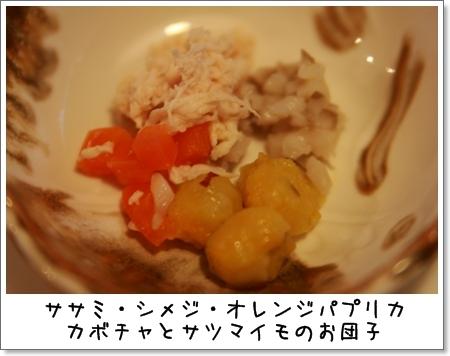 2008_1024_062631AA.jpg