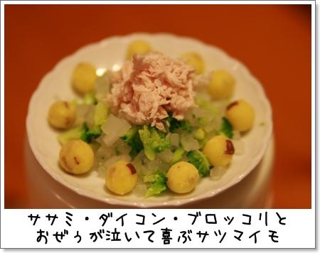2008_1024_201118AA.jpg